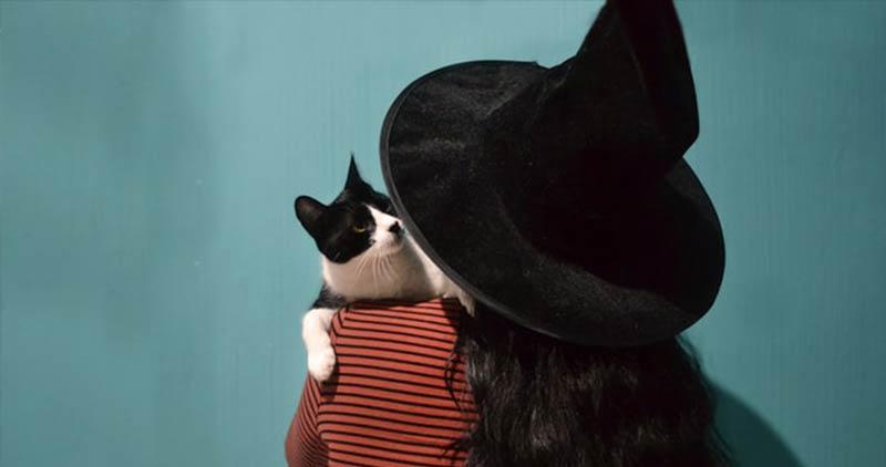 bruxa-com-gato-preto