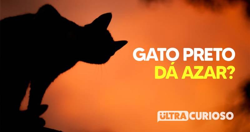 gato-preto-azar